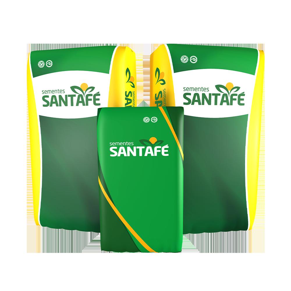SEMENTE PANICUM MOMBAÇA SANTAFÉ - 20KG
